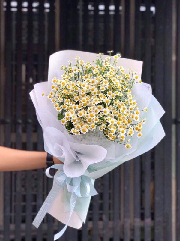 bó hoa cuc tana