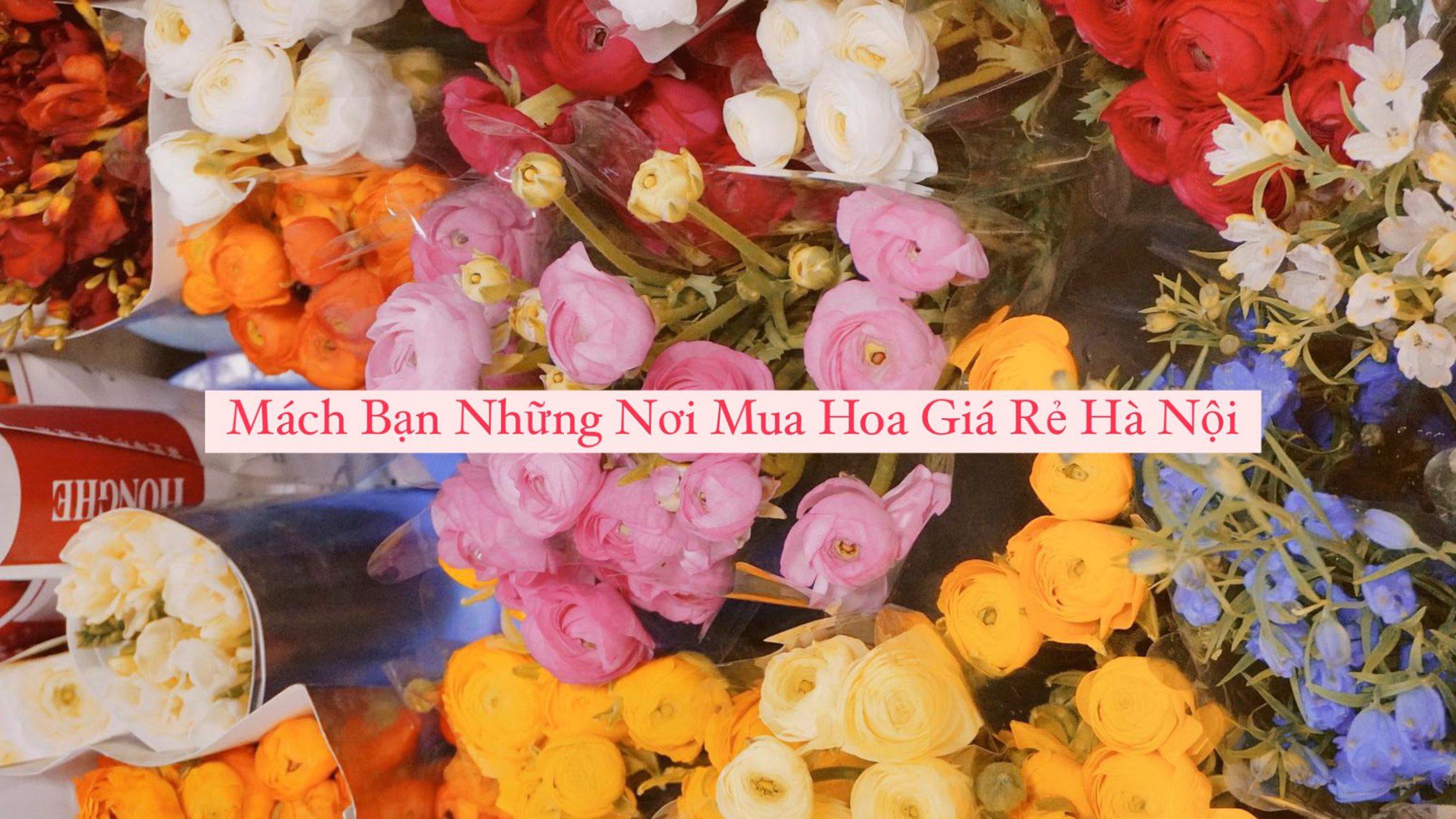 Mách Bạn Những Nơi Mua Hoa Tươi Giá Rẻ Tại Hà Nội